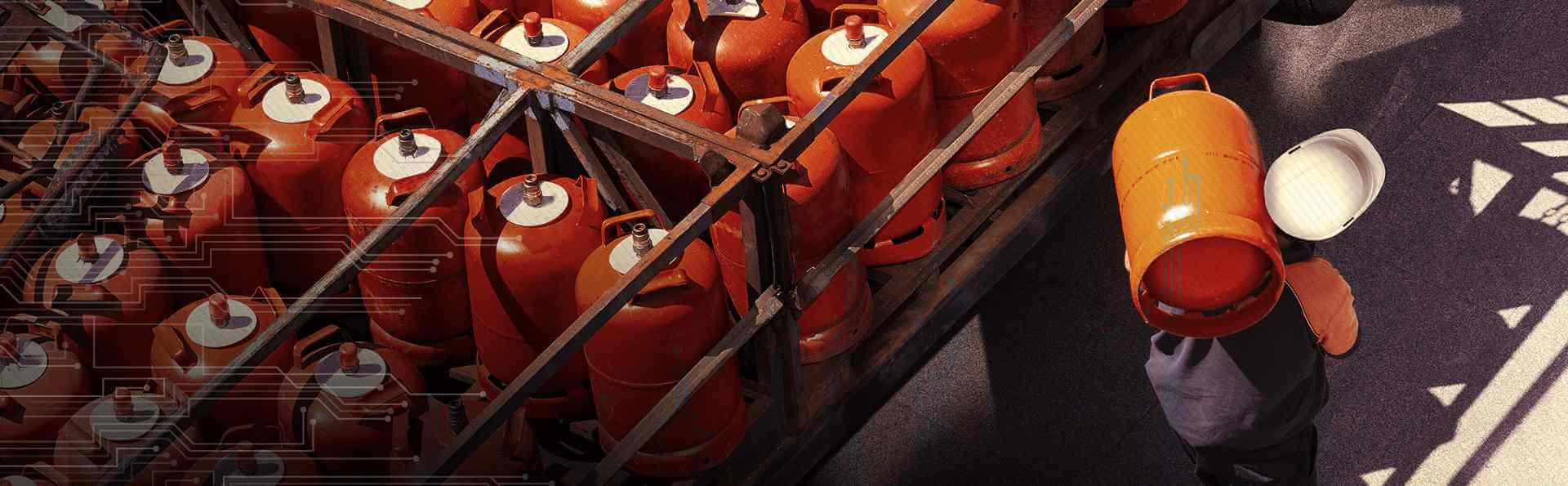 Digitizing the world's largest subsidy program: LPG cylinder delivery